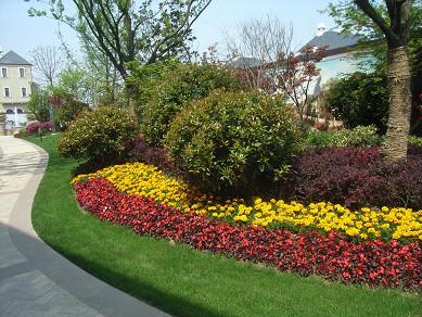 居住区绿化植物配置要领