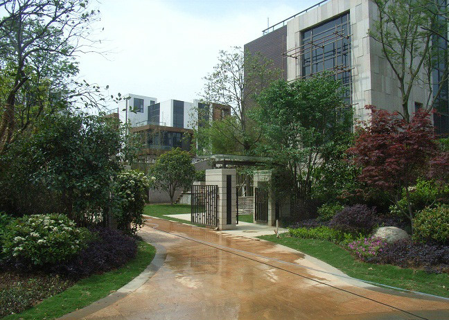 层次搭配丰富美观的别墅庭院入口景观绿化空间