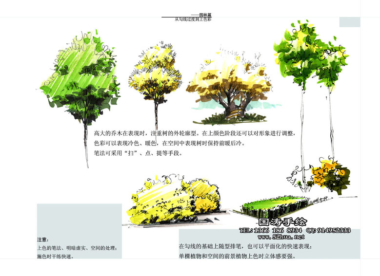 单体马克笔手绘沙发 汽车 植物 雕塑