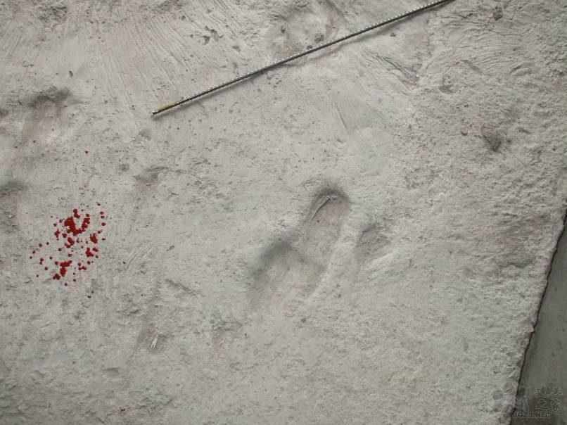现浇混凝土楼板上人过早,后期保护不利.jpg