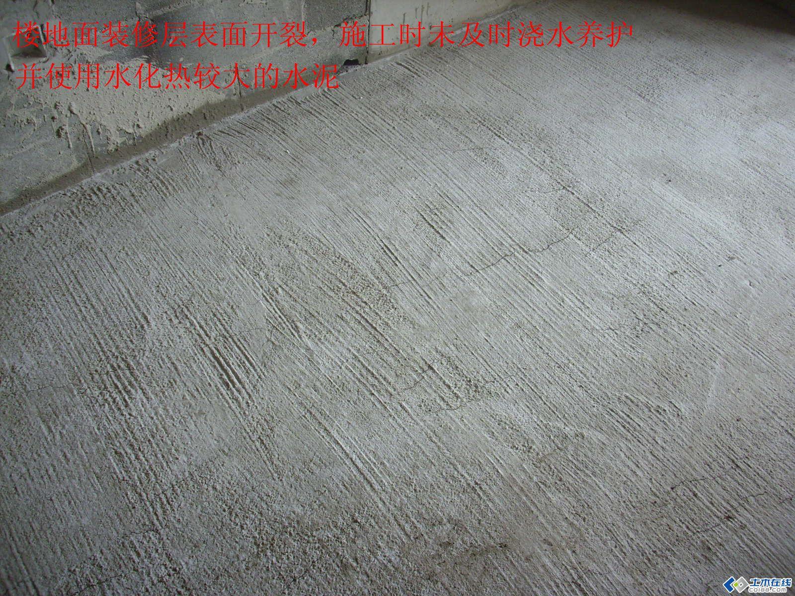 DSCI0151.JPG