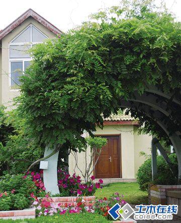 某别墅庭院的植物配置及建议(图)