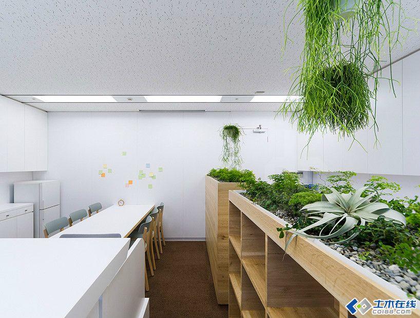 公装设计 日本名古屋办公室绿植的布置