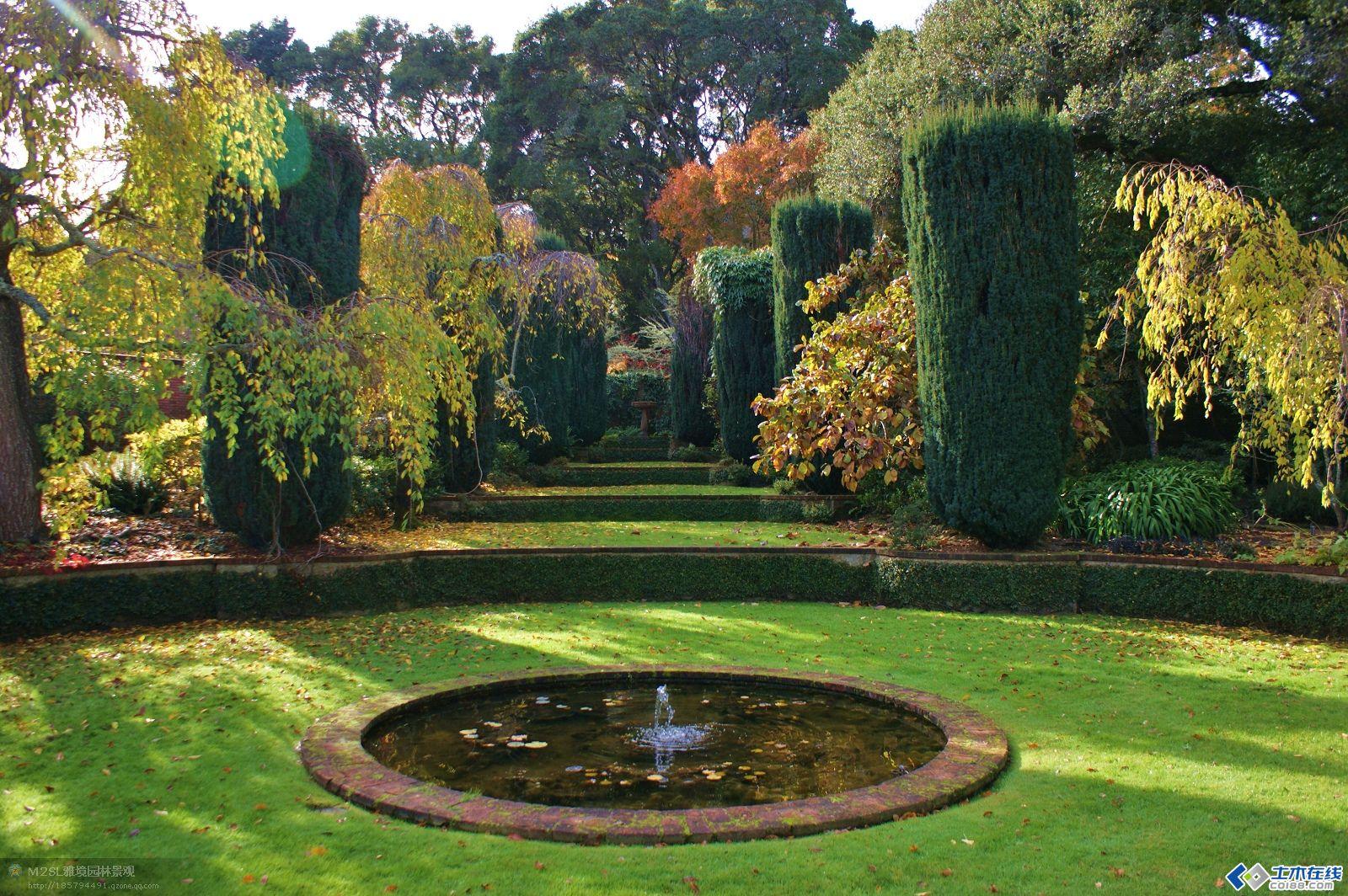 园林景观植物配置(5-6)