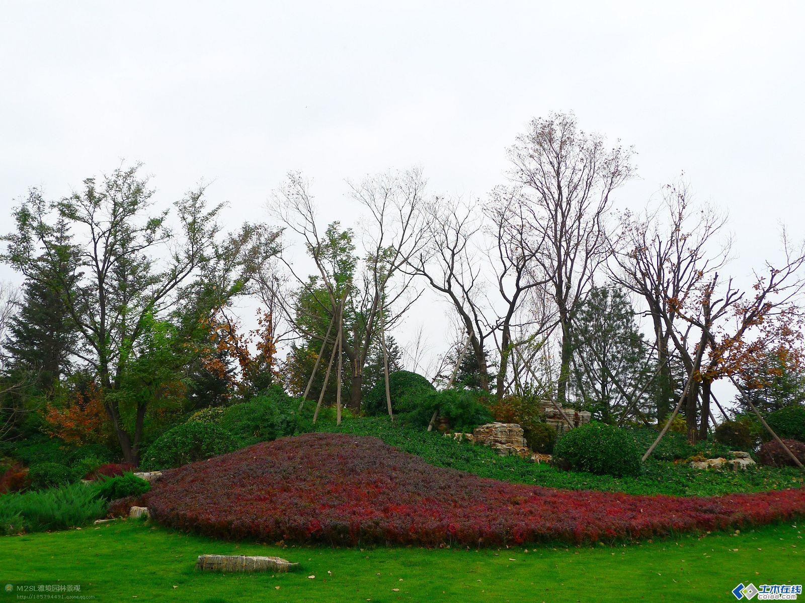 园林景观植物配置八