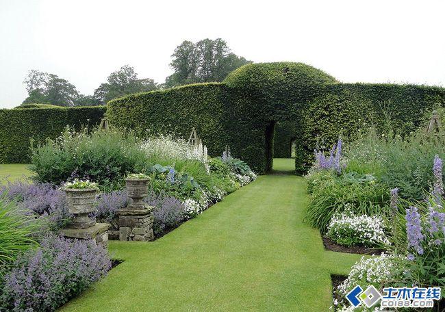 塑形植物花园的景观植物搭配设计