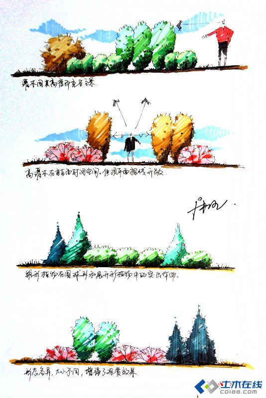 植物配置方法,手绘作品表现作品欣赏图片http://bbs