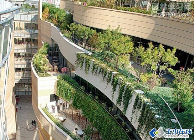 一般屋顶花园的植物有哪些种植方式呢?芳草居今天为大家详细介绍几种常规的种植方式:主要有地栽、盆栽、桶栽、种植池栽和立体种植等。选择种植方式时不仅要考虑功能及美观需要,而且要尽量减轻非植物的重量。在种植方式上,绿篱和栏架不易过高,且其每行的延伸方向应与常年主要风向平行。如果当地风力常大于20m/s,则应设防风篱架,以免遭受风害。常用的植物配置的形式有以下5种类型。 (1)垂挂式