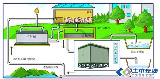 科学圈养生态猪 猪场污水处理新edf壹定发官网图片