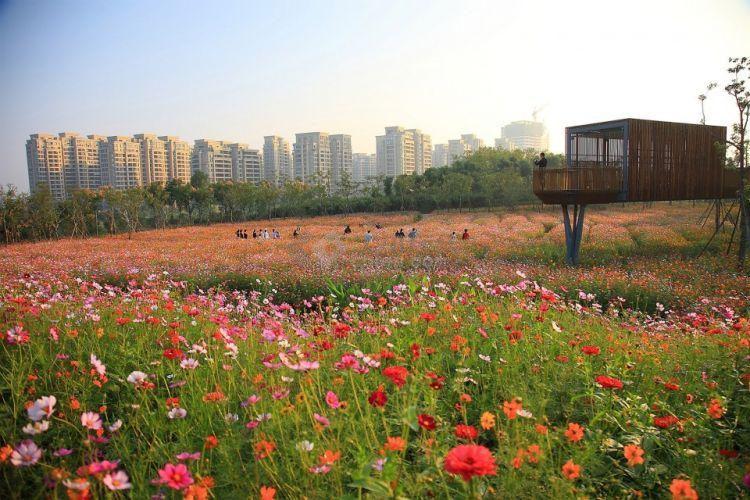 Quzhou-Lumin-Park-by-Turenscape-8-960x640.jpg