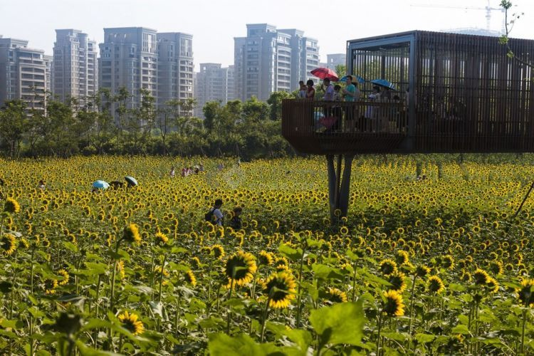 Quzhou-Lumin-Park-by-Turenscape-7-960x640.jpg