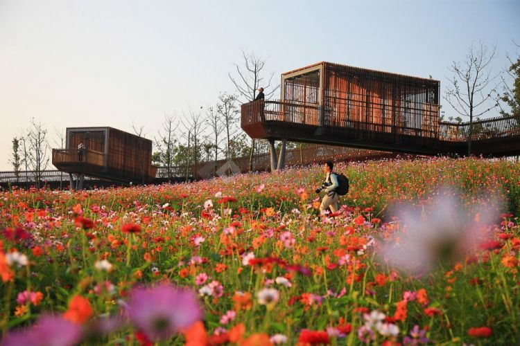 Quzhou-Lumin-Park-by-Turenscape-11-960x640.jpg