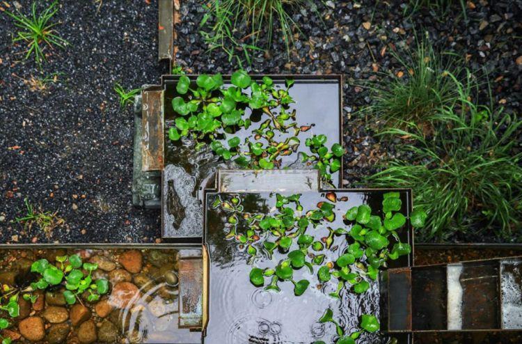 005-Rain-Garden-UpS-960x633.jpg