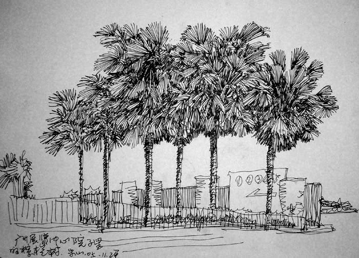 建筑手绘树黑白