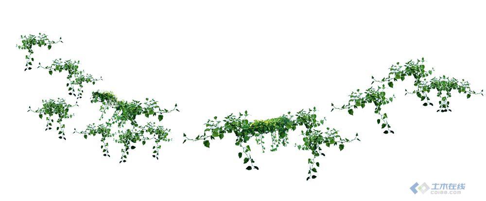 藤蔓素材 手绘藤蔓素材 ps藤蔓素材 ps免抠图藤蔓素材