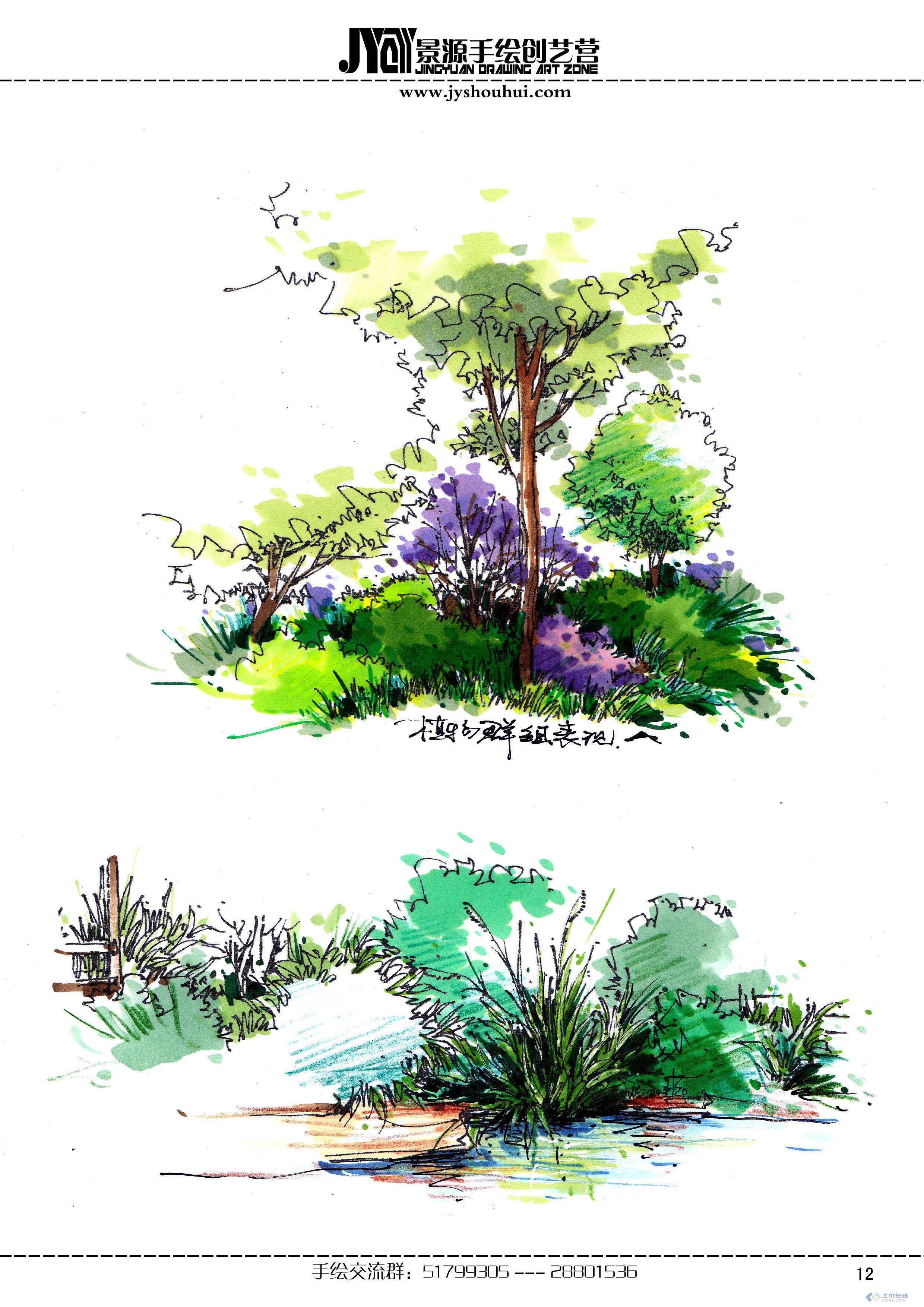 植物风景手绘马克笔
