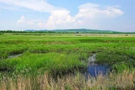 水土保持对水资源量与水质的影响