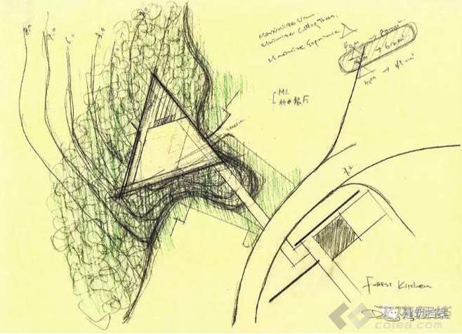 【建筑师】对话郑东贤|与阿那亚相遇:海边槐树林与山林金山岭